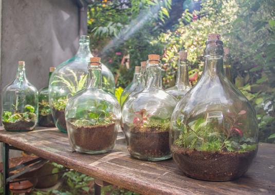 sfeerbeeld atelier Flessengroen flessentuinen